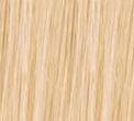 Bleach Blonde(#613)